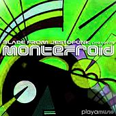 Disco Collection, Vol. 2 (Blade from Jestofunk Presents Montefroid) von Various Artists