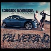 Pal Verano von Carlos Barbosa