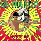 Free Up de Big Mountain