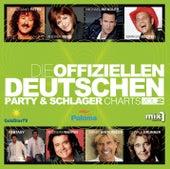 Die offiziellen Deutschen Party- und Schlagercharts, Vol. 2 von Various Artists