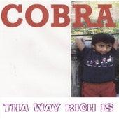 Tha Way Rich Is by Cobra