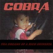 Tha Dreams of a Rich Shinesta by Cobra