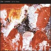 Solid Steps by Joe Lovano