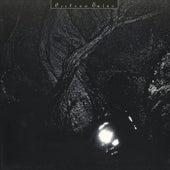 The Pink Opaque von Cocteau Twins