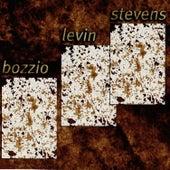 Situation Dangerous by Terry Bozzio/Levin/Stevens...
