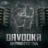 Un poing c'est tout de Davodka