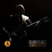 Tiempo Perfecto de Felipe Peláez (Pipe Peláez)