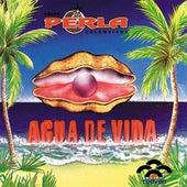 Agua De Vida by Grupo Perla Colombiana