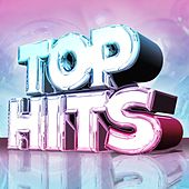 Top Hits by Various Artists
