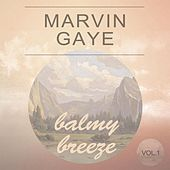 Balmy Breeze Vol. 1 by Marvin Gaye