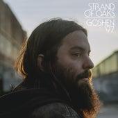 Goshen '97 by Strand Of Oaks