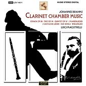 Brahms: Clarinet Chamber Music by Various Artists