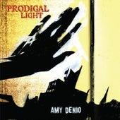 Prodigal Light by Amy Denio