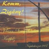 Komm, Zigány! di Johan Strauss