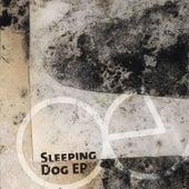 Sleeping Dog EP by echoecho