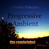 Progressive Ambient (Top 20 Tracks with Organic Sounds on Vibrant Rhythms) de Various Artists