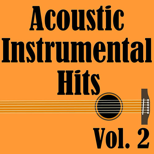 Acoustic Instrumental Hits, Vol. 2 by Wildlife
