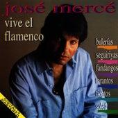 Vive El Flamenco: Bulerias - Seguiriyas - Fandangos - Tientos - Tangos de José Mercé