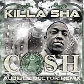 Cash (Audible Doctor Remix) by Killa Sha