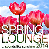 Spring Lounge 2014 (Sounds Like Sunshine) by Various Artists
