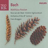 J.S. Bach: St. Matthew Passion by Various Artists