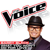What You Won't Do For Love by Barry Black