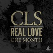 Real Love / One Month by Todd Terry
