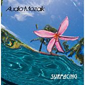 Surfacing de Audio Mozaik
