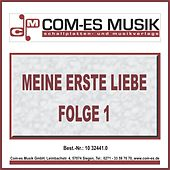 Meine erste Liebe, Folge 1 by Various Artists