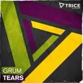 Tears by Grum