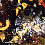 Brownswood Electr*c 4 by Various Artists