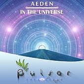 In The Universe by Aeden