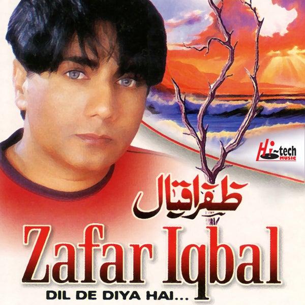 Tu Mera Hai Sanam Song Download: Dil De Ke Sanam By Zafar Iqbal