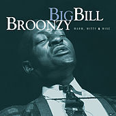 Warm, Witty And Wise by Big Bill Broonzy