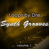 Loops by Dre: Synth Grooves, Vol. 1 by Andre Forbes