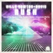 Rush by Billy Newton Davis