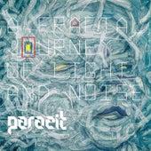 A Fractal Journey of Light and Noise de Parazit