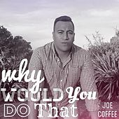Why Would You Do That by Joe Coffee