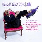 Promised Land by Billy Newton Davis