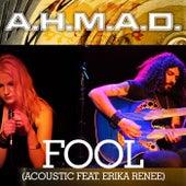 Fool (Acoustic) by A.H.M.A.D.