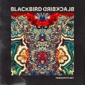 Tangerine Sky by Blackbird Blackbird