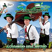 Schneidig und Kernig von Schneiderwirt Trio