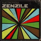 Electric Soul di Various Artists