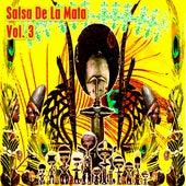 Salsa De La Mata, Vol. 3 by Various Artists