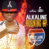 Burning Up - Single von Alkaline