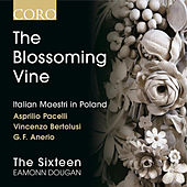 The Blossoming Vine: Italian Maestri in Poland von Eamonn Dougan