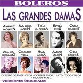 Las Grandes Damas de la Cancion y Sus Mas Grandes Exitos by Various Artists