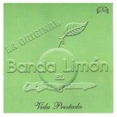 Vida Prestada by La Arrolladora Banda El Limon
