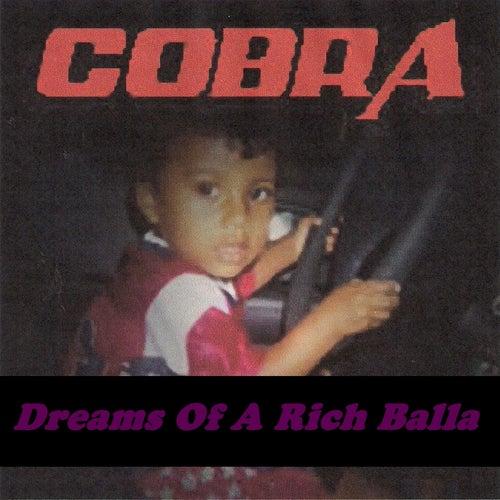 Dreams of a Rich Balla by Cobra