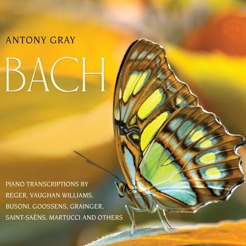 Bach Piano Transcriptions by Antony Gray